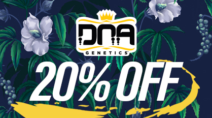 20% off 420 Special