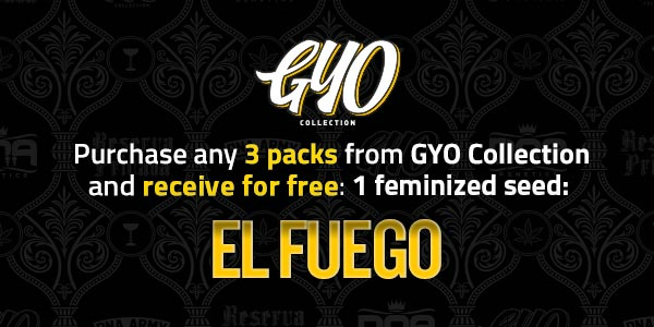 Purchase any 3 packs from Grow Your Own and receive 1 free feminized EL Fuego seed