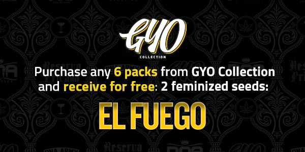 Purchase any 6 packs from Grow Your Own and receive 2 free feminized El Fuego seeds