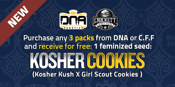 Purchase any 3 packs from DNA or CFF and receive free Kosher Cookies