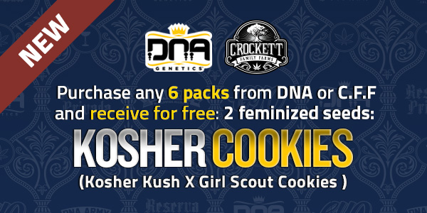 Purchase any 6 packs from DNA or CFF and receive free Kosher Cookies